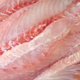 Wild Domestic Red Grouper fillets, skin-off, pin-bone removed (2.5lb case, fresh)