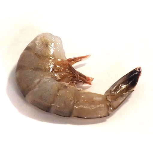 Wild Gulf of Mexico Raw Large White Shrimp IQF, shell-on, head-off (approx 45 shrimp per 2lb bag, frozen)