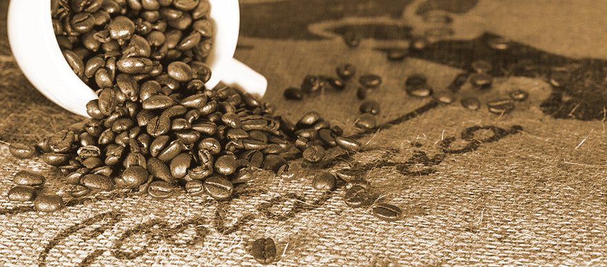 How Does The Humble Coffee Bean Get From Costa Rica to Your Cup?