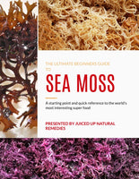 The Ultimate Beginners Guide To Sea Moss E-book