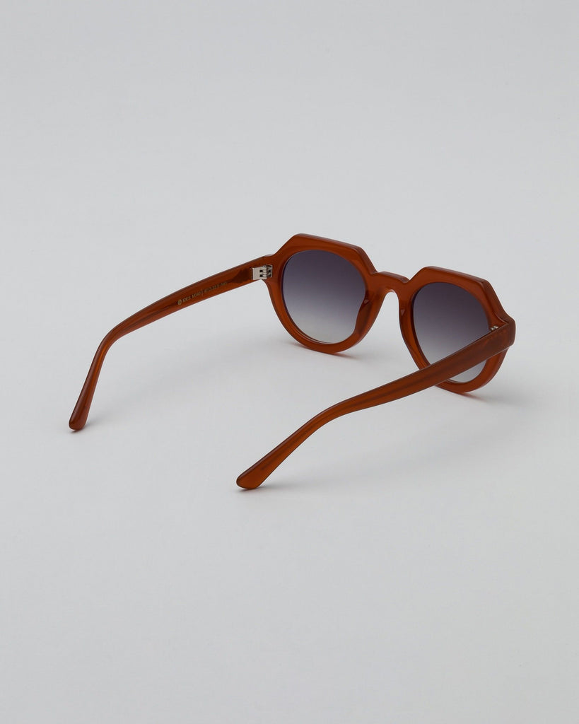 Sunglasses Brown Orange Unisex GOBI