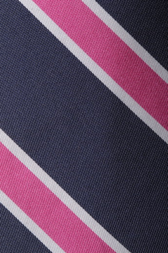 Ben Sherman- Striped Tie