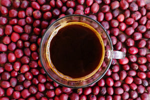 Your Coffee is Going Bad! 3 Reasons Why Whole Bean Coffee is the Best Choice.