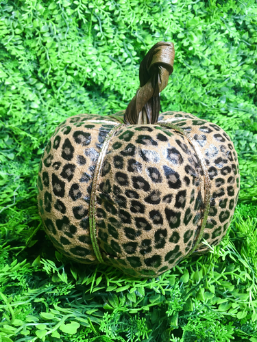 leopard print pumpkin fall decor autumn decor home decor | shop women's clothing clothes apparel gifts accessories online or in store at boerne la te da boutique | a favorite of locals and san antonio visitors too