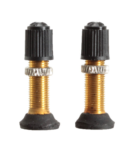 Stan's Schrader Valve Stem and Core, 32mm Universal - Pair