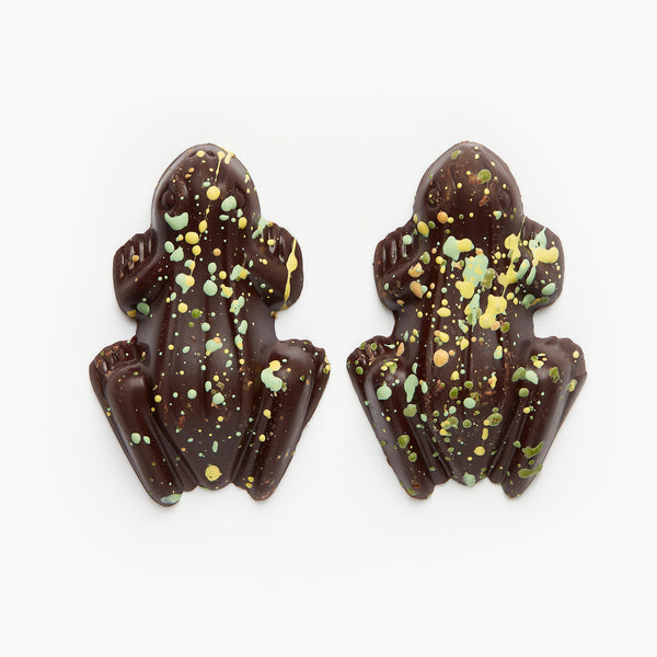 Two chocolate frogs