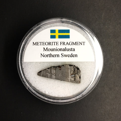 Muonionalusta Meteorite Fragment, Northern Sweden