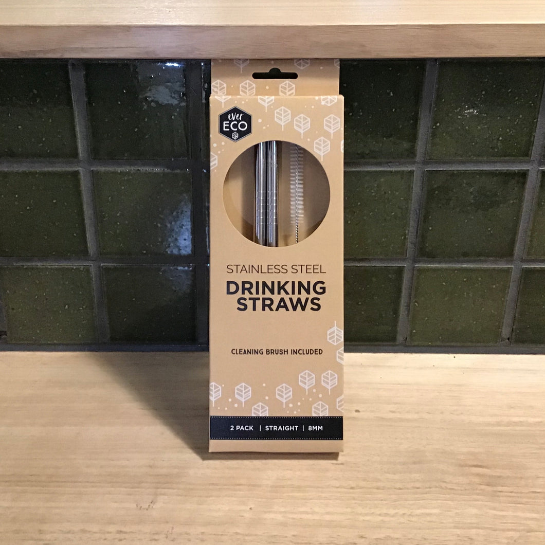 Ever Eco Straws 2Pack+Brush Stainless Steel Straight