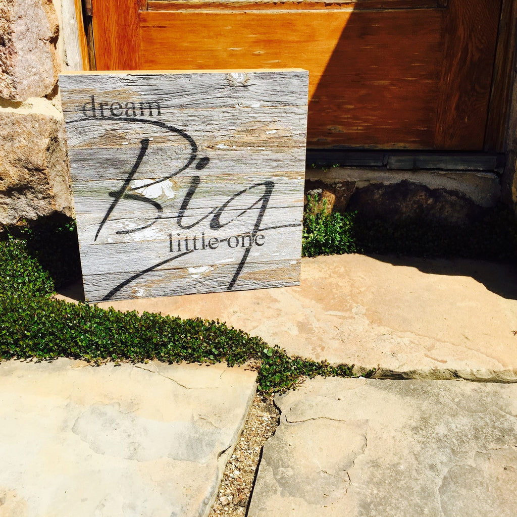 Dream Big Little One Reclaimed Barn Wood Pallet Shadow Box Sign