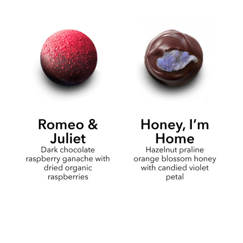 dark chocolate raspberry truffle / orange blossom honey hazelnut praline