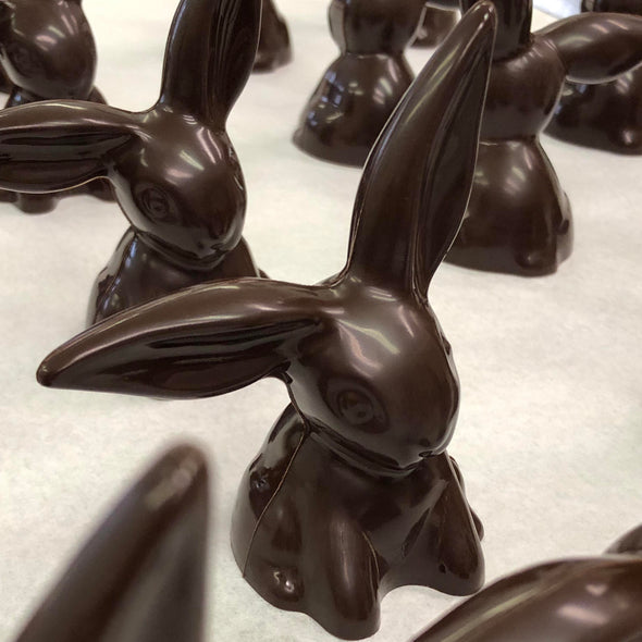 Solid Chocolate Floppy Ear Bunnies