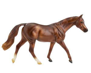 Coppery Chestnut Thoroughbred