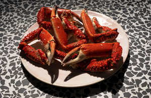spider crab claws