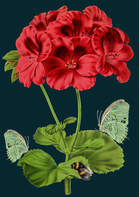 'Bee & Green Butterfly' Greetings Card
