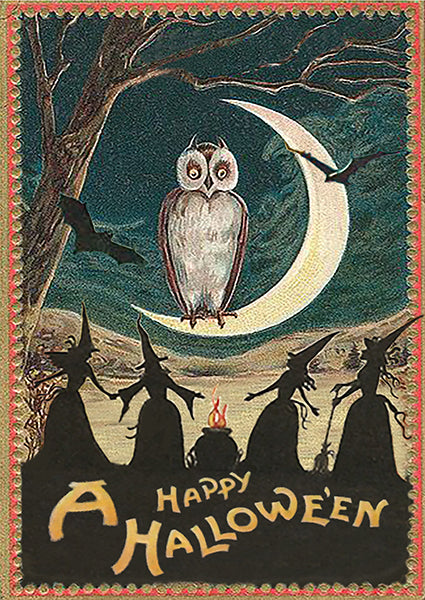 Hallowen Owl Greetings Card