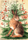 'Winter Hare' Greetings Card