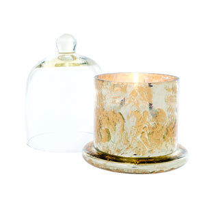 Gold Amber Spruce Cloche Candle - Large