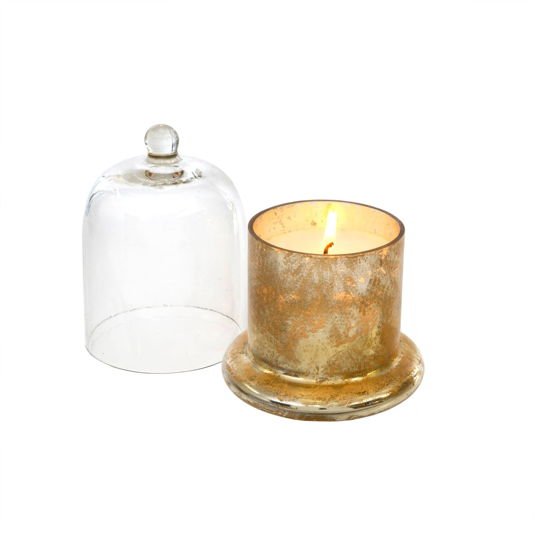 Gold Amber Spruce Cloche Candle - Small