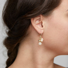 Load image into Gallery viewer, Earth Earrings - Rose/Gold