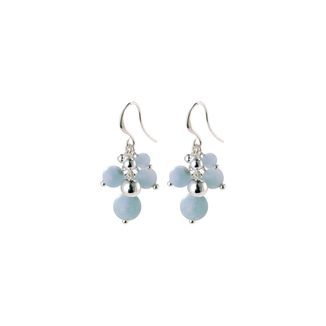 Earth Earrings - Blue/Silver