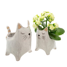 Load image into Gallery viewer, Here Kitty Pot - Small