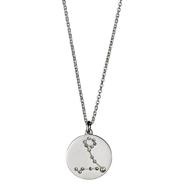 Pisces Star Sign Necklace