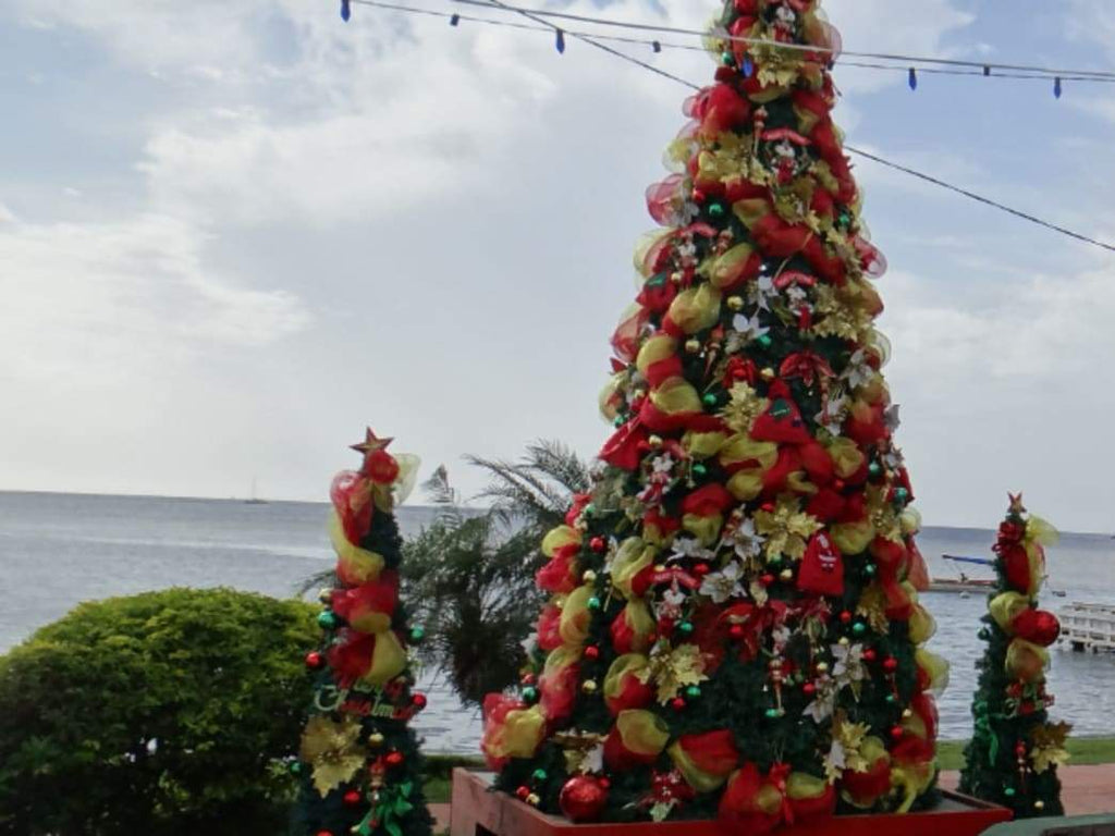 Have a Tropical Christmas in St. Lucia
