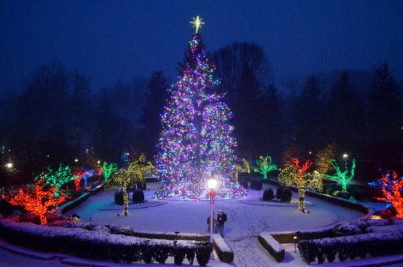 Travel: Enjoy a Country Christmas in Charleston, West Virginia | Schmidt Christmas Market