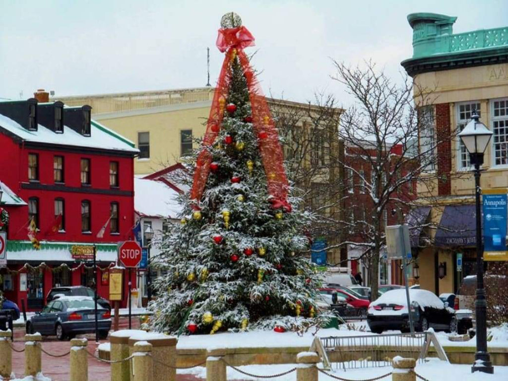 Travel: Have a Terrific Christmas in Annapolis, Maryland