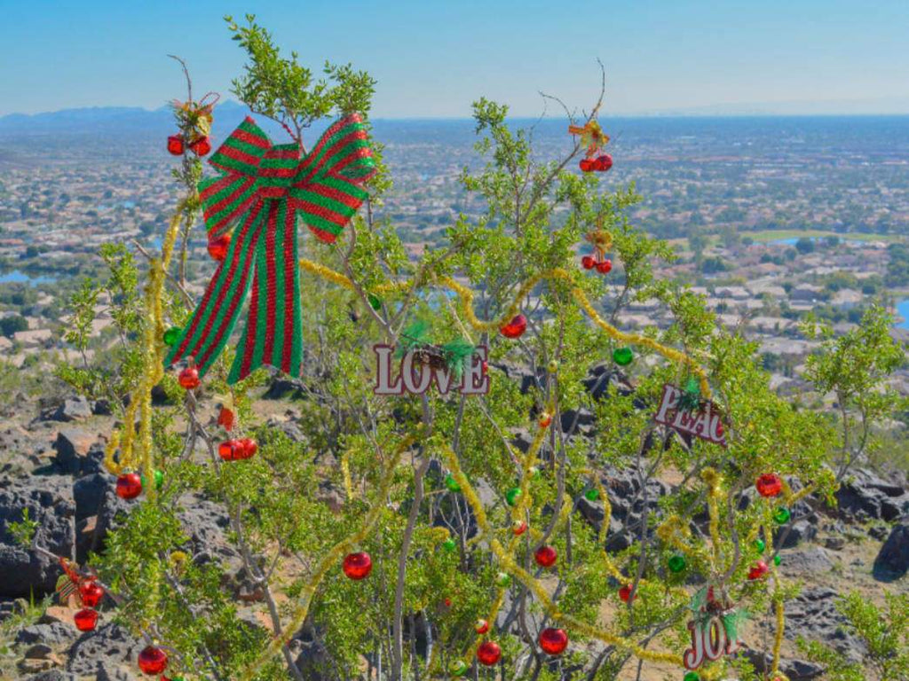 Travel: Phoenix Arizona is the Capital City that Makes a Great Christmas Destination