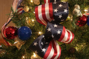 Travel:  Top 52 Capitols in the USA at Christmas