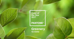 "Decorating with ""Greenery"" the Pantone Color of the Year"