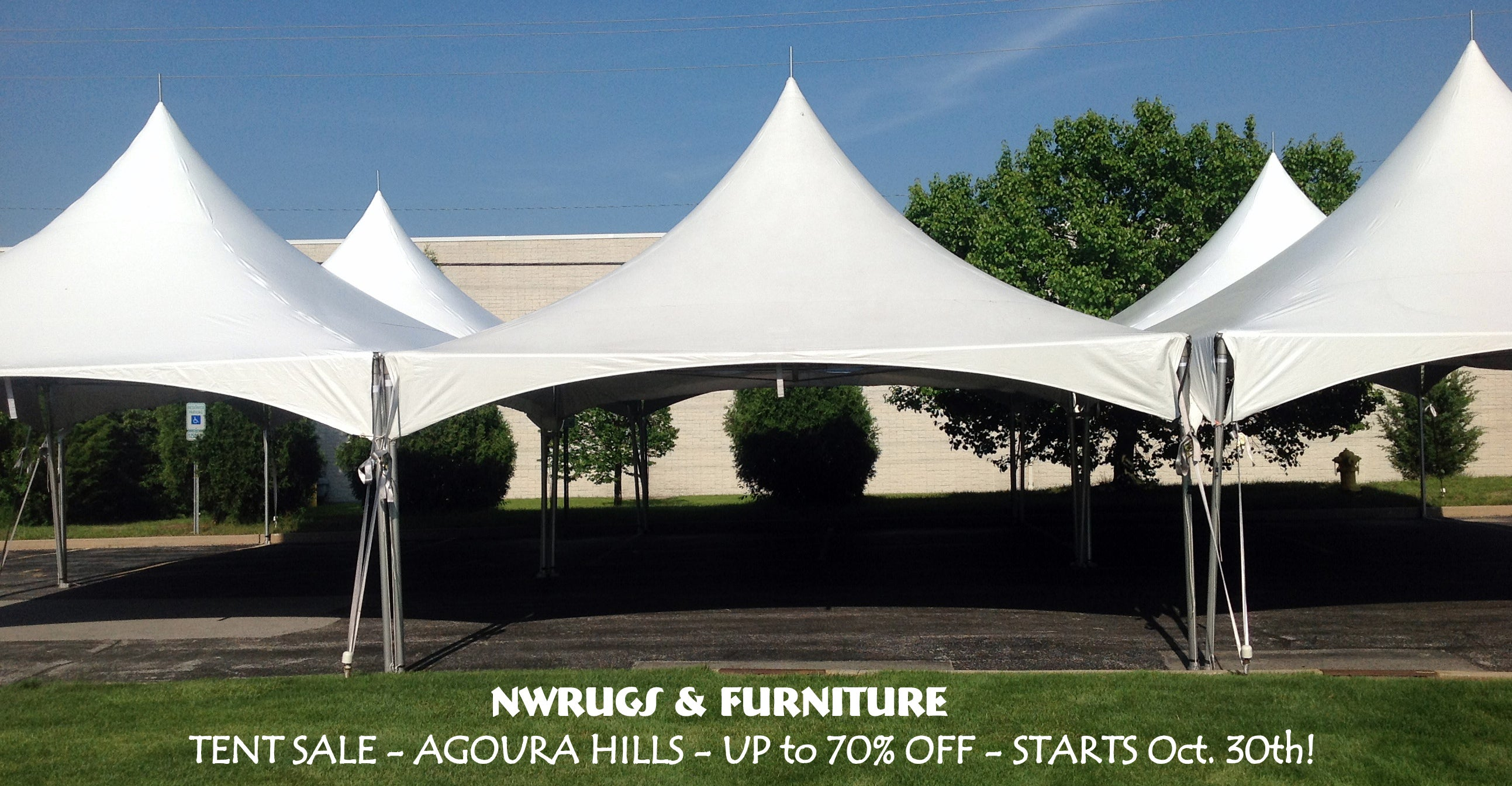 Tent Sale NW Rugs