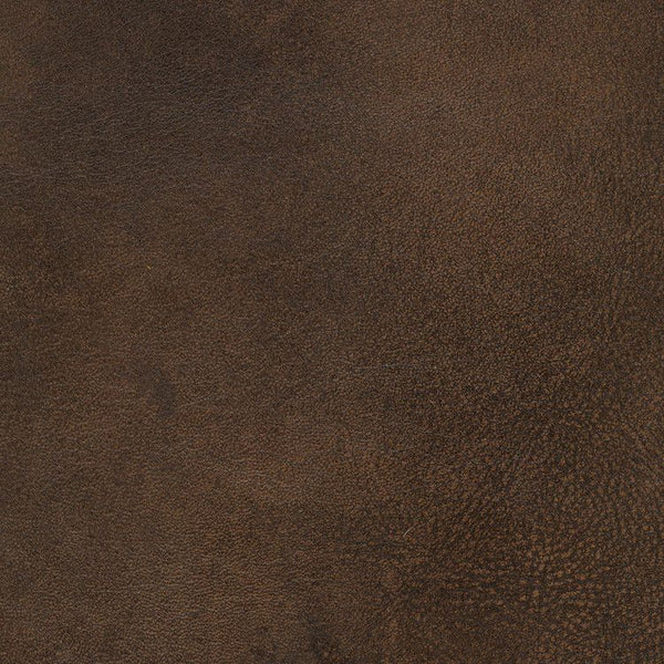 Impressions Chocolate Nw Rugs
