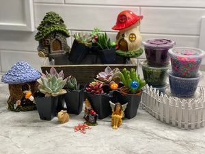 Surprise Fairy Garden Plant Nite Kits- SHIPS PRIORITY