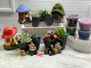 Surprise Gnome Plant Nite Kits- SHIPS PRIORITY
