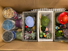 Load image into Gallery viewer, Surprise Gnome Plant Nite Kits- SHIPS PRIORITY