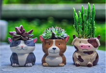 Load image into Gallery viewer, Plant Buddies- Barnyard Animals Set of 6