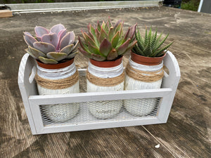 "Farmhouse DIY Planter Kit with 4"" Succulents Included"