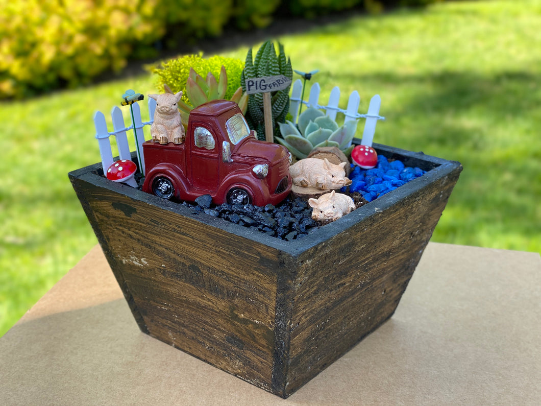 DIY Succulent Pig Farm Garden Kit