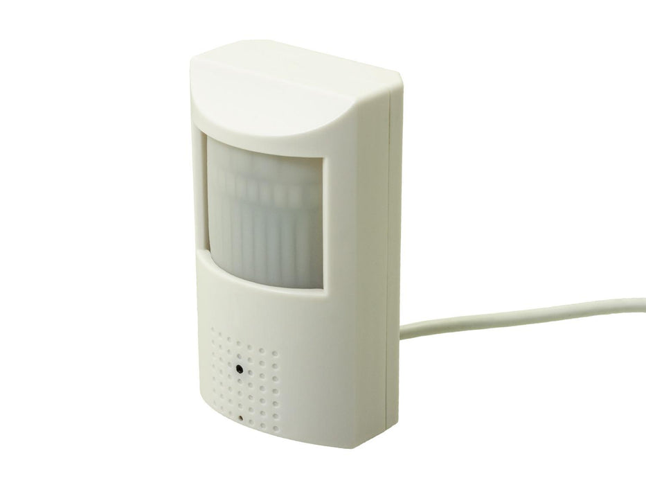 Business Security PIR Sensor Camera - SpyCameraCCTV