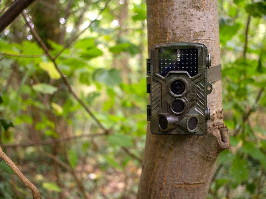 B-Grade Waterproof Trail Wildlife HD Camera with PIR Triggering - SpyCameraCCTV