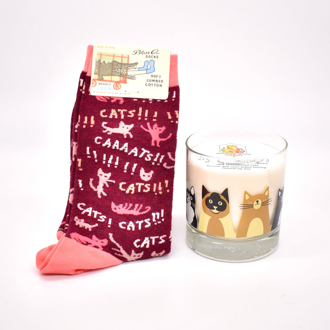 Cats! Bundle