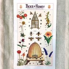 Load image into Gallery viewer, Honey Bee Bundle