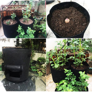Plant Grow Bags For Potatoes - 3 sizes - Survivalways