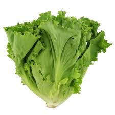 Locally Grown Lettuce