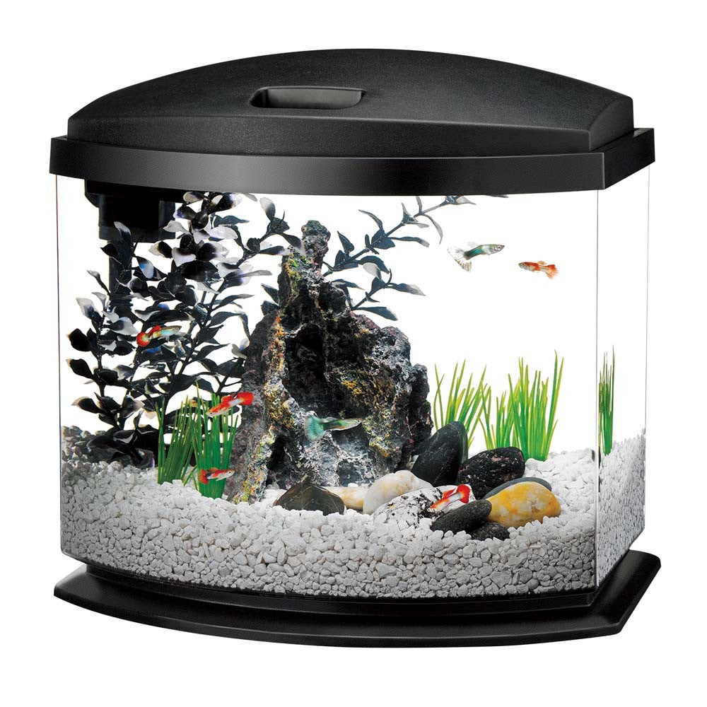Aqueon LED MiniBow Desktop Aquarium Kit Black 5gal
