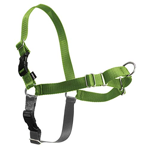EASY WALK HARNESS XS APPLE EWH
