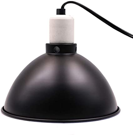 Deep Dome Mini Clamp Lamp