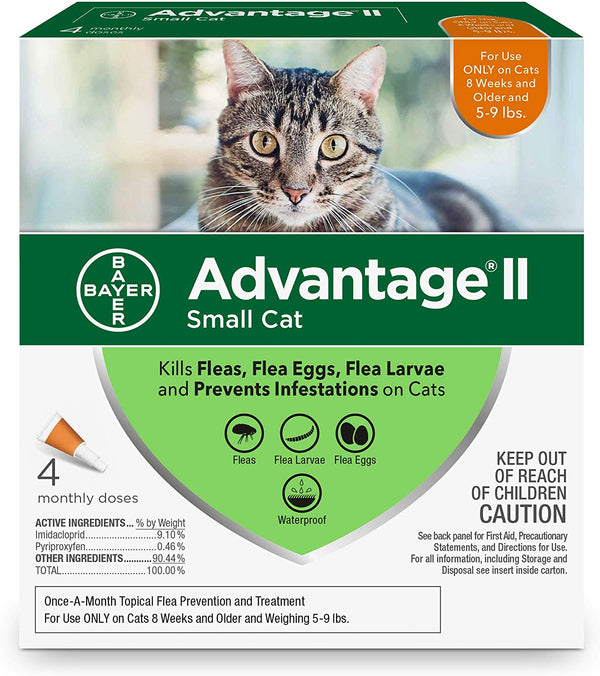 Advantage II Cat Orange 5-9 4d
